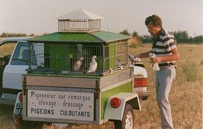 Pigeonnier transportable - Construire un pigeonnier plan ...